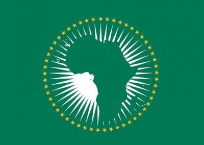 Custom Flag African Union