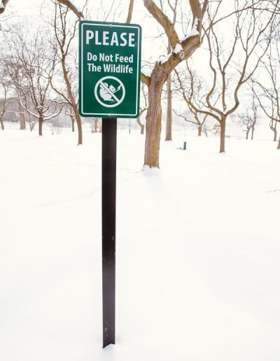 Niagara Falls State Park aluminum Digitally Printed grafitti proof Pole Sign EX-Non Illuminated EX-Post and Panel